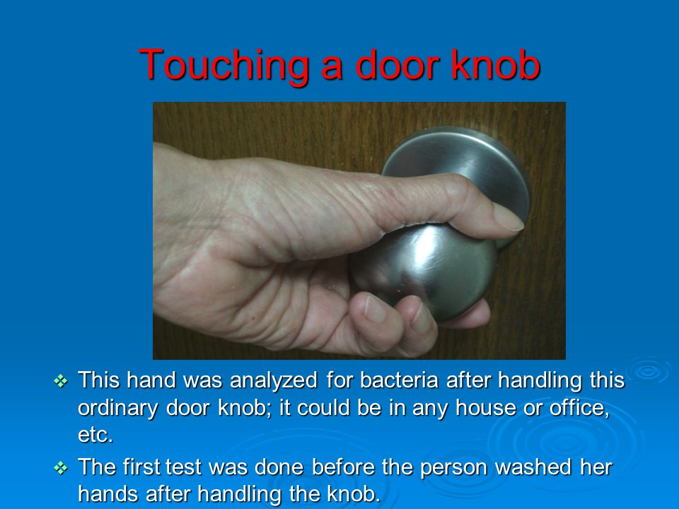 Touching a door knob This hand was analyzed for bacteria after handling this ordinary door knob; it could be in any house or office, etc.