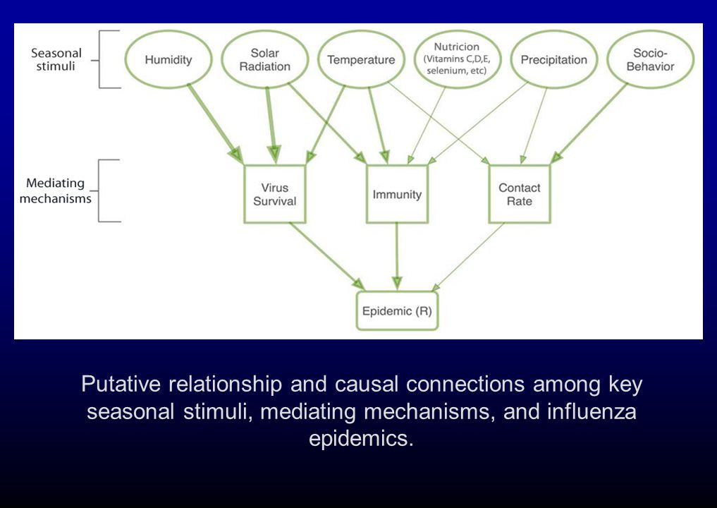 Putative relationship and causal connections among key seasonal stimuli, mediating mechanisms, and influenza epidemics.