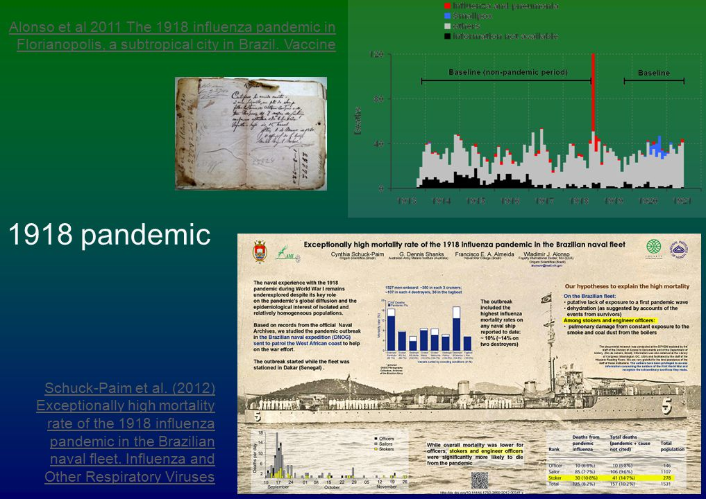 Alonso et al 2011 The 1918 influenza pandemic in Florianopolis, a subtropical city in Brazil. Vaccine