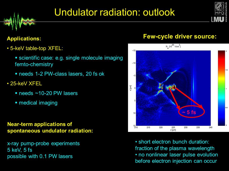Undulator radiation: outlook