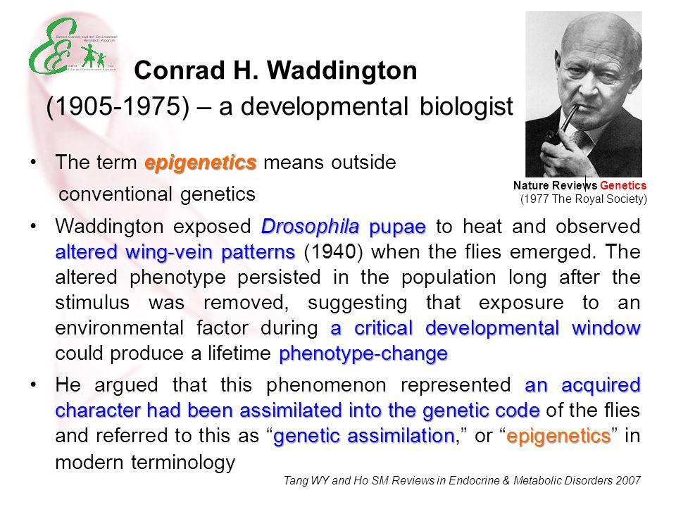 Conrad H. Waddington (1905-1975) – a developmental biologist