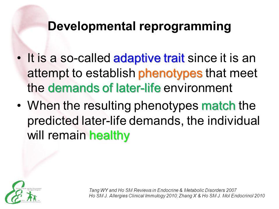 Developmental reprogramming