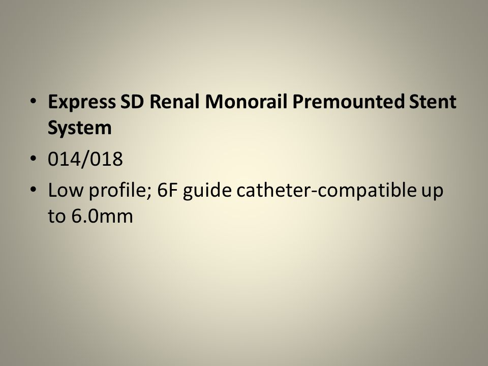 Express SD Renal Monorail Premounted Stent System