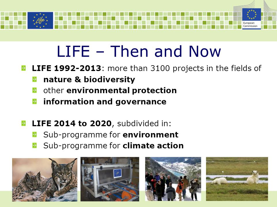 LIFE – Then and Now LIFE 1992-2013: more than 3100 projects in the fields of. nature & biodiversity.