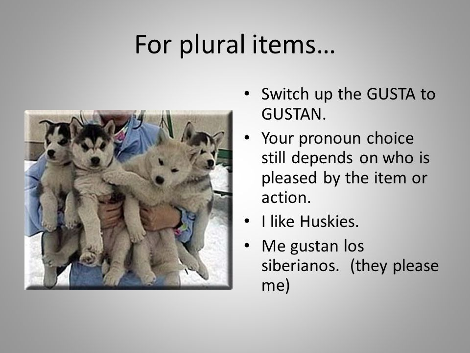 For plural items… Switch up the GUSTA to GUSTAN.