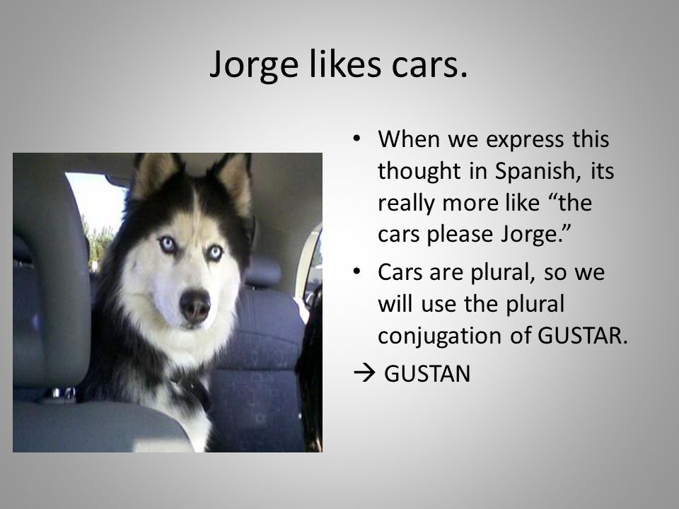 Jorge likes cars. When we express this thought in Spanish, its really more like the cars please Jorge.