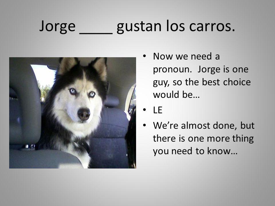 Jorge ____ gustan los carros.