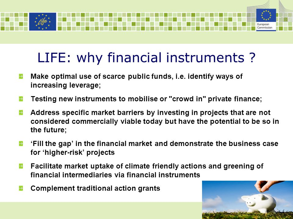 LIFE: why financial instruments