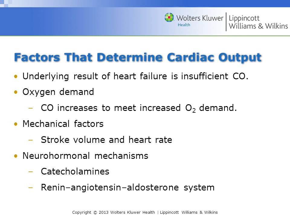 Factors That Determine Cardiac Output