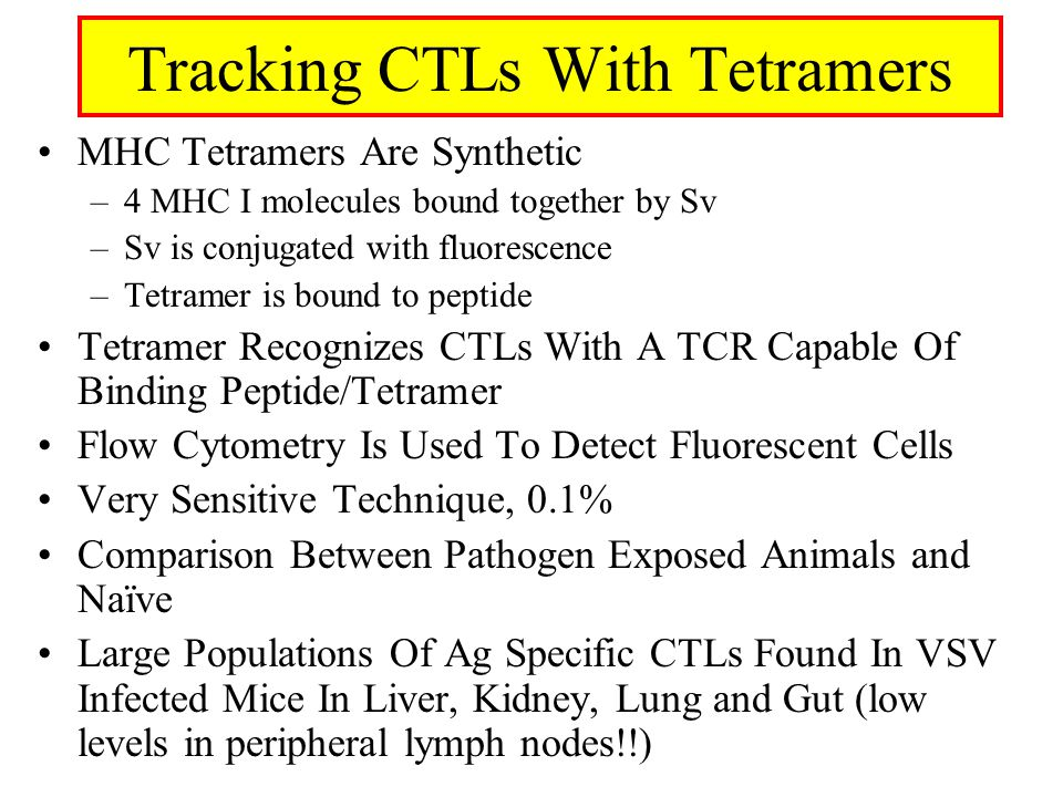 Tracking CTLs With Tetramers