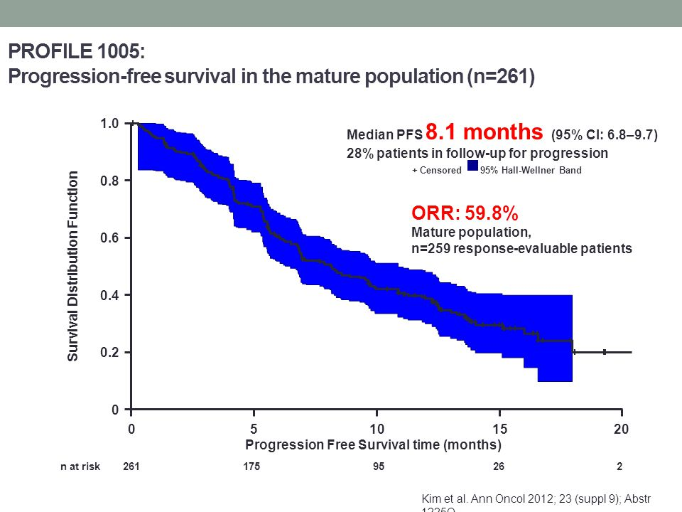 Survival Distribution Function Progression Free Survival time (months)