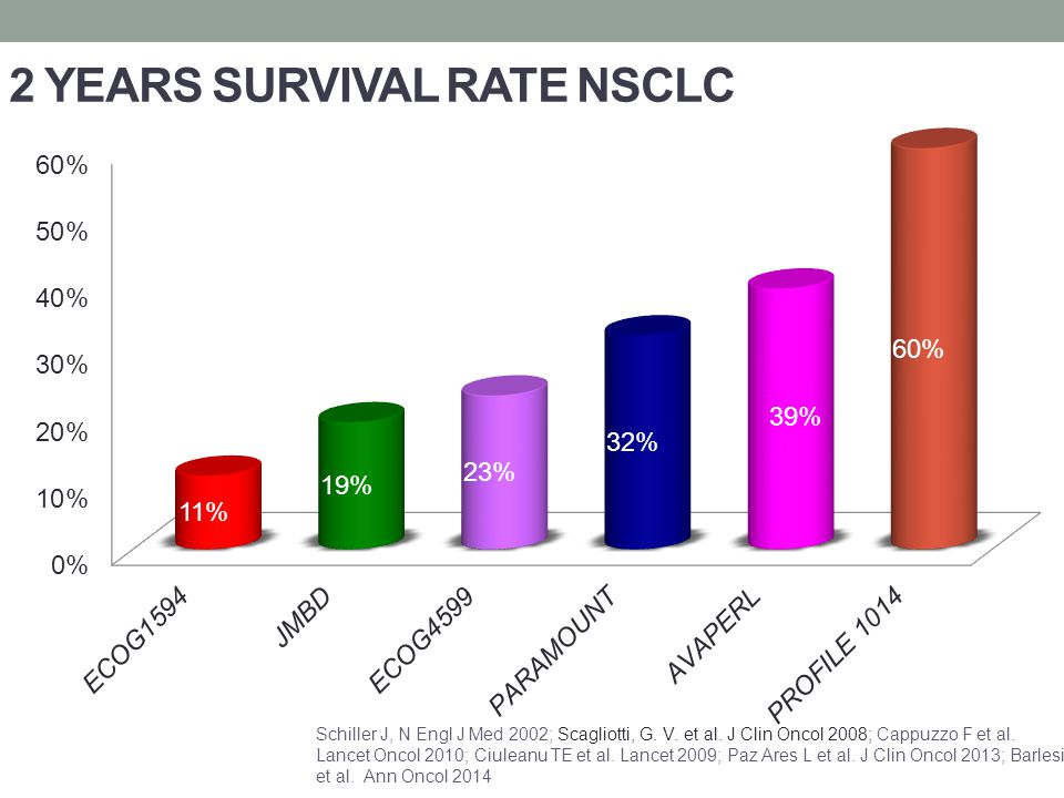 2 YEARS SURVIVAL RATE NSCLC