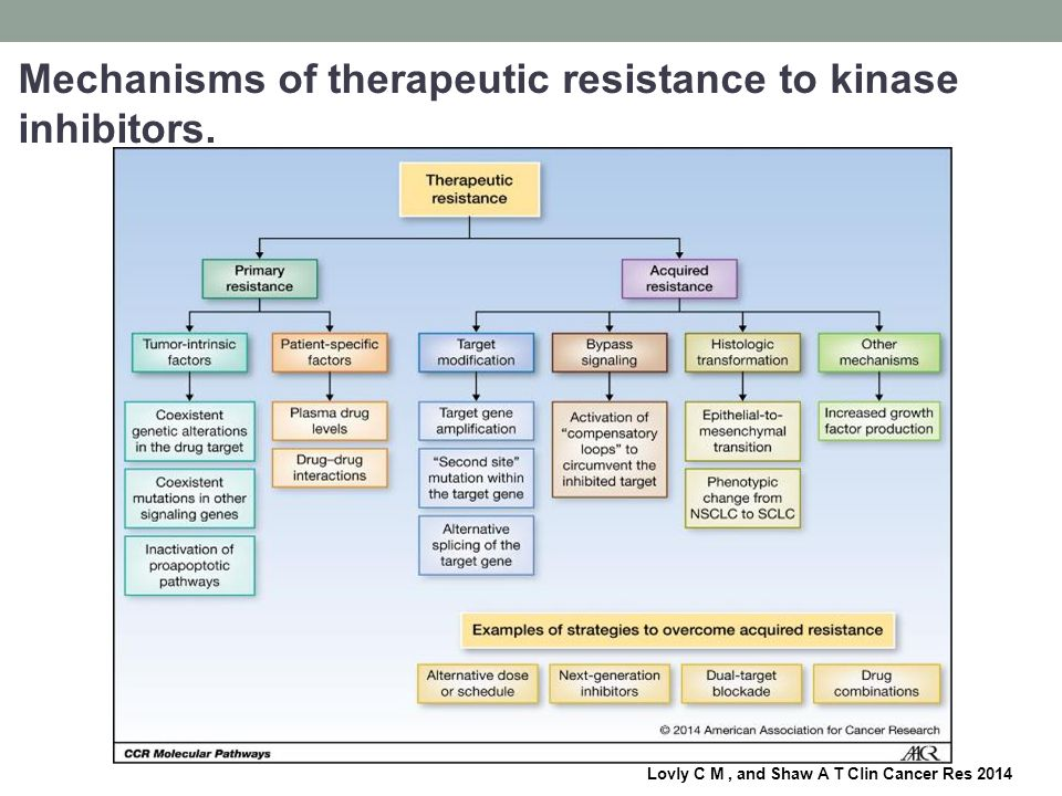 Mechanisms of therapeutic resistance to kinase inhibitors.