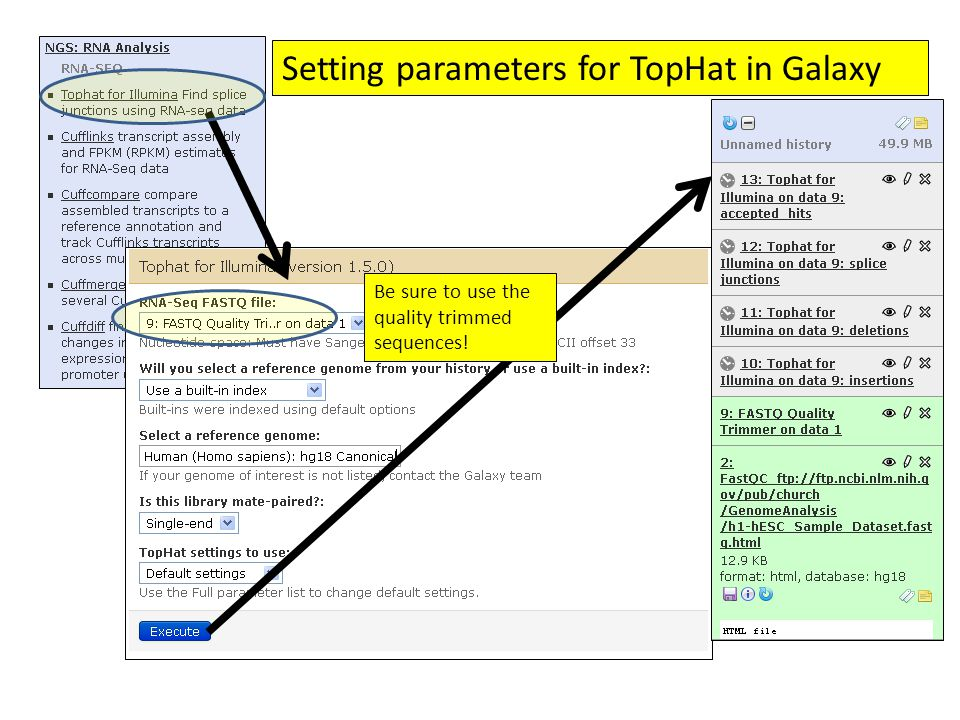 Setting parameters for TopHat in Galaxy