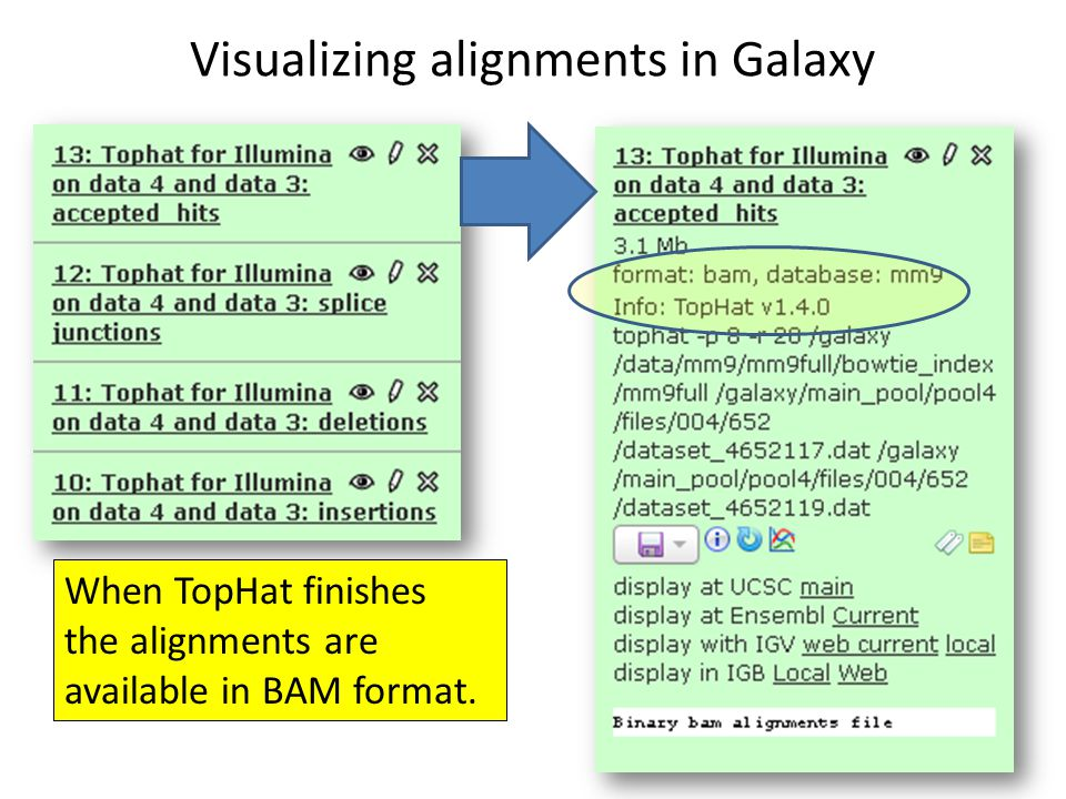 Visualizing alignments in Galaxy