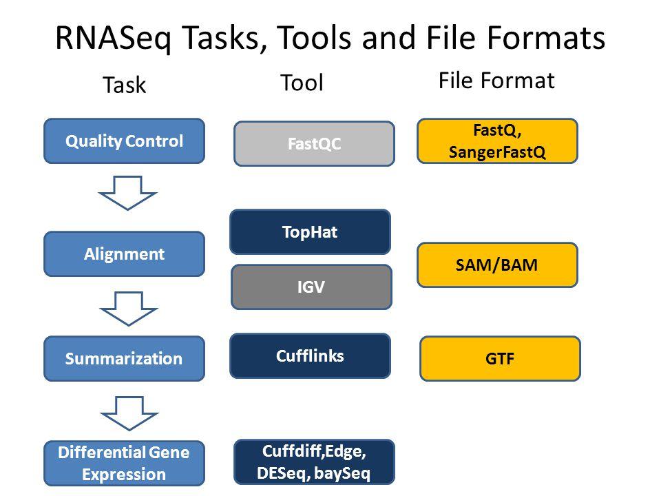 RNASeq Tasks, Tools and File Formats