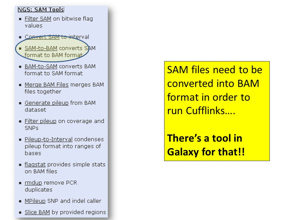 SAM files need to be converted into BAM format in order to run Cufflinks….