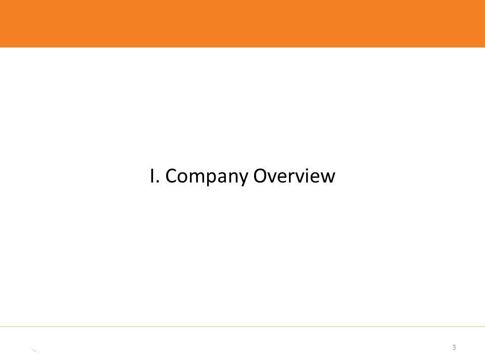 I. Company Overview