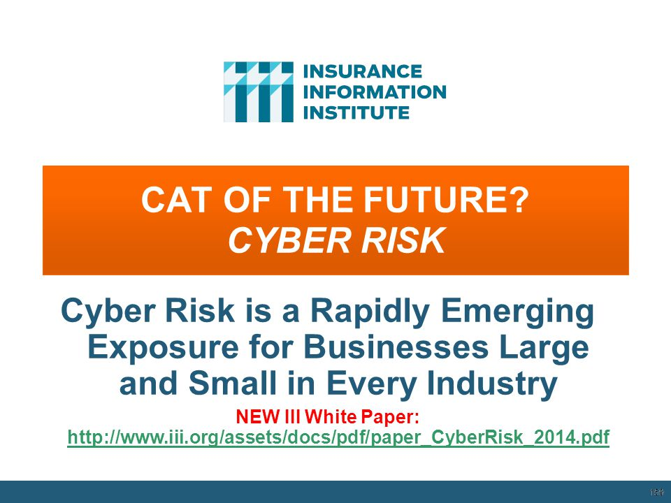 CAT OF THE FUTURE CYBER RISK