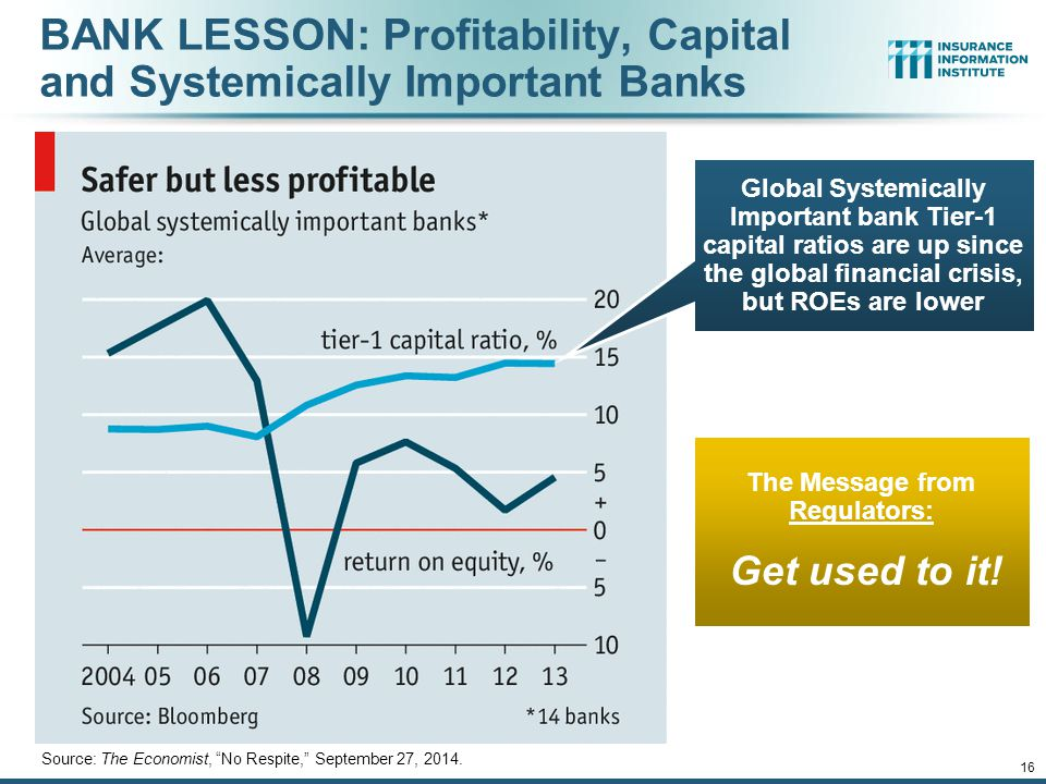 BANK LESSON: Profitability, Capital and Systemically Important Banks