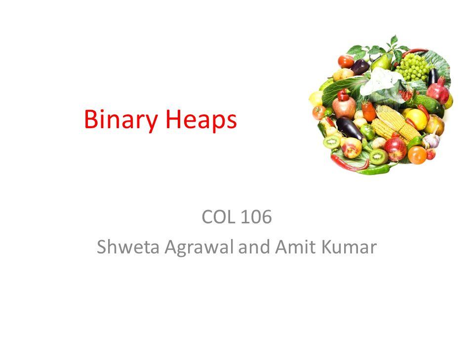COL 106 Shweta Agrawal and Amit Kumar