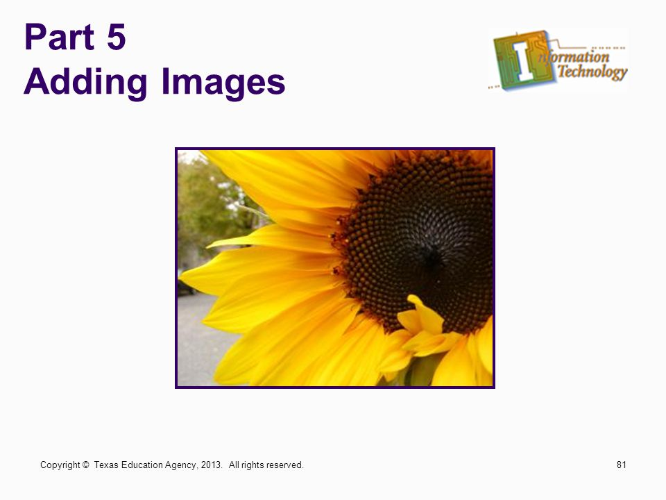 Part 5 Adding Images Copyright © Texas Education Agency, 2013. All rights reserved.