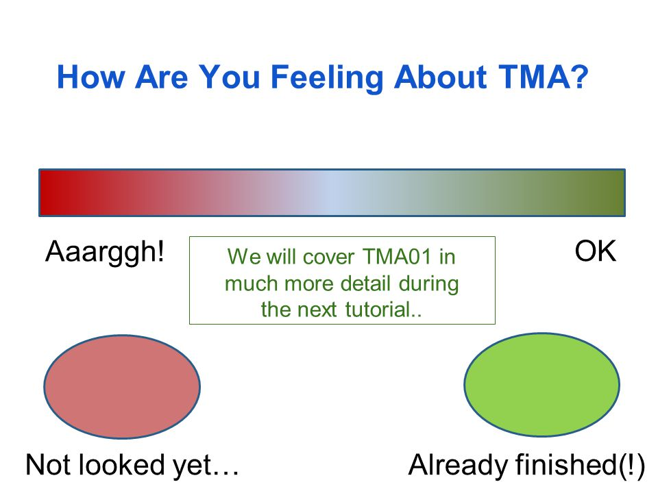 How Are You Feeling About TMA