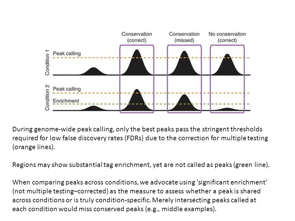 During genome-wide peak calling, only the best peaks pass the stringent thresholds required for low false discovery rates (FDRs) due to the correction for multiple testing (orange lines).
