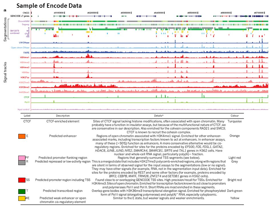 Sample of Encode Data