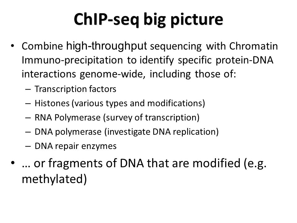 ChIP-seq big picture