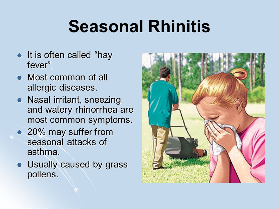 Seasonal Rhinitis It is often called hay fever .