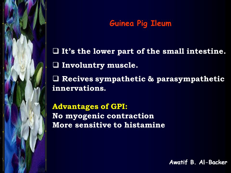 It's the lower part of the small intestine. Involuntry muscle.