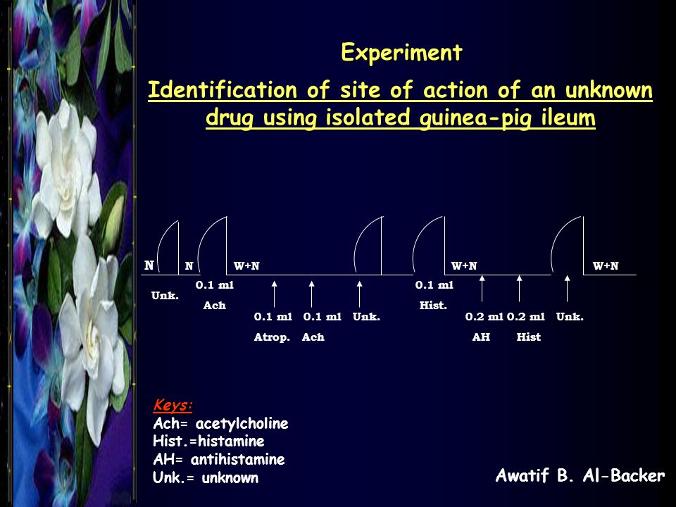 Experiment Identification of site of action of an unknown drug using isolated guinea-pig ileum.