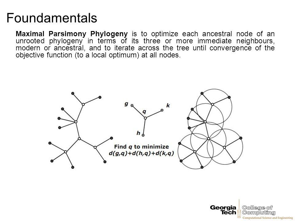 Foundamentals