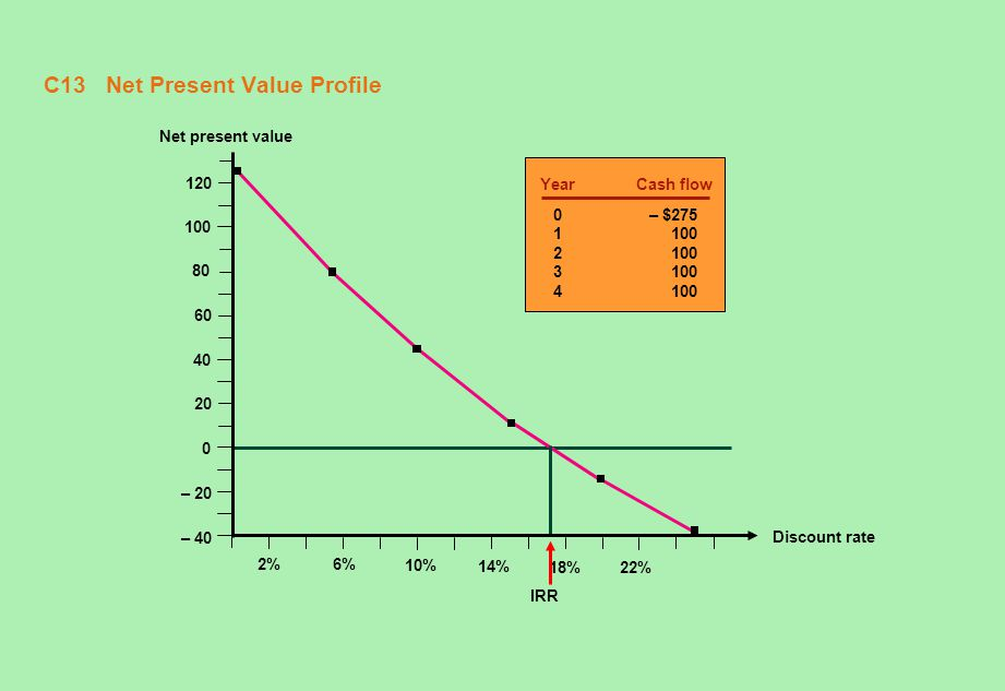 C13 Net Present Value Profile
