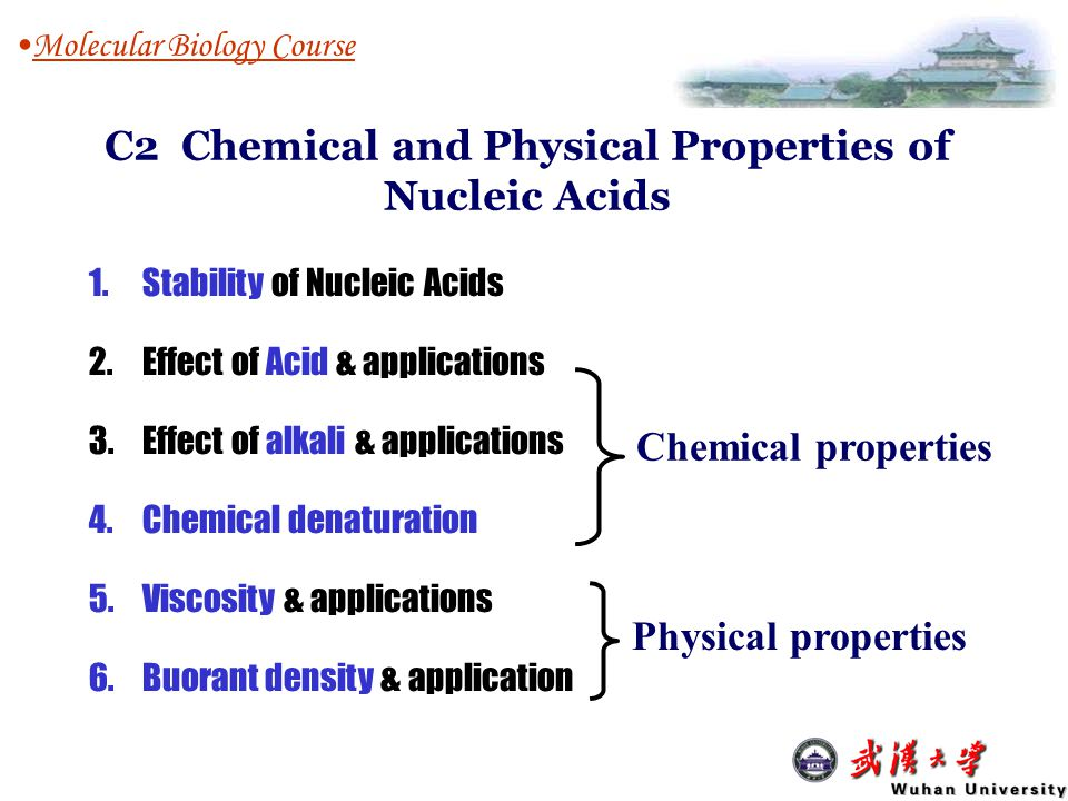 C2 Chemical and Physical Properties of Nucleic Acids