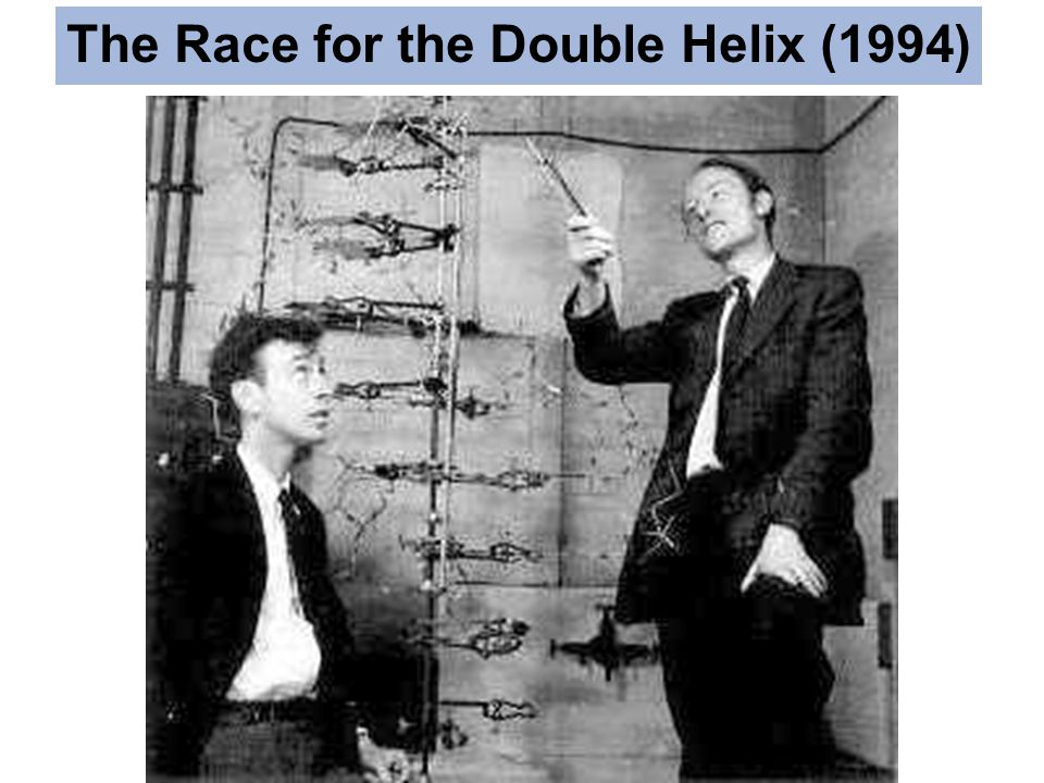 The Race for the Double Helix (1994)