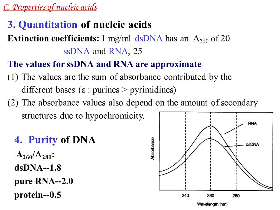 3. Quantitation of nucleic acids