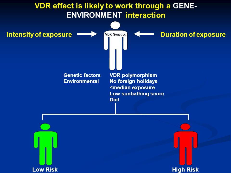 VDR effect is likely to work through a GENE-ENVIRONMENT interaction