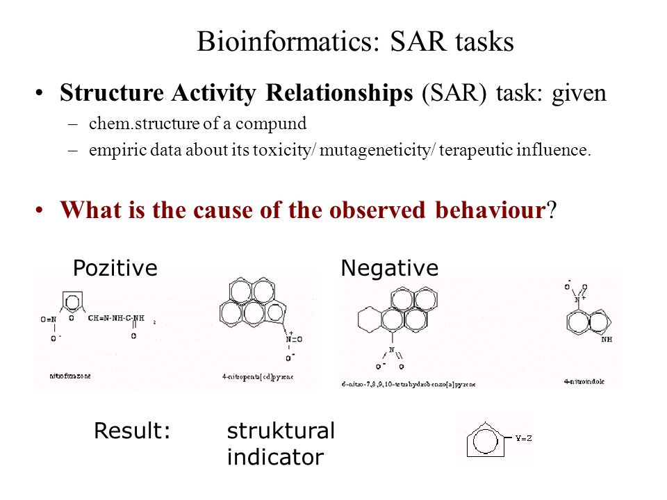 Bioinformatics: SAR tasks