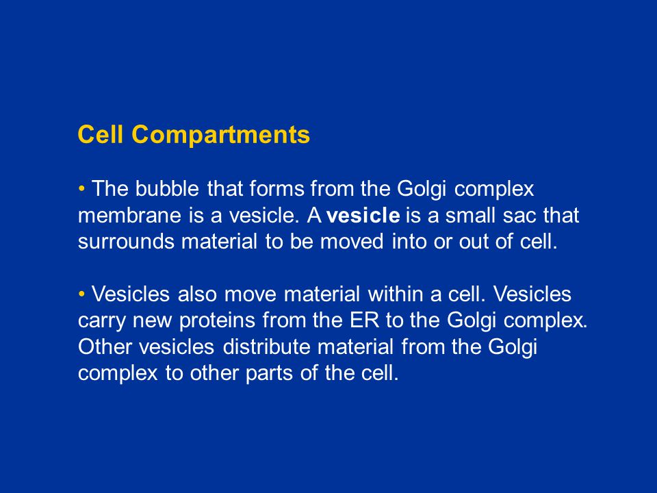 Chapter C1 Cell Compartments