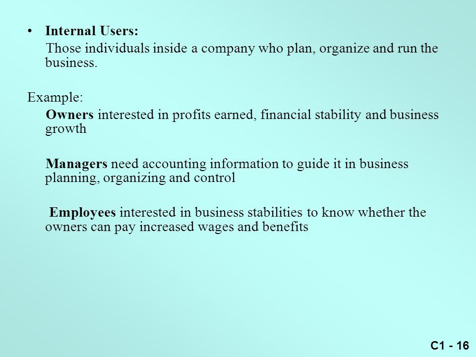 Internal Users: Those individuals inside a company who plan, organize and run the business. Example: