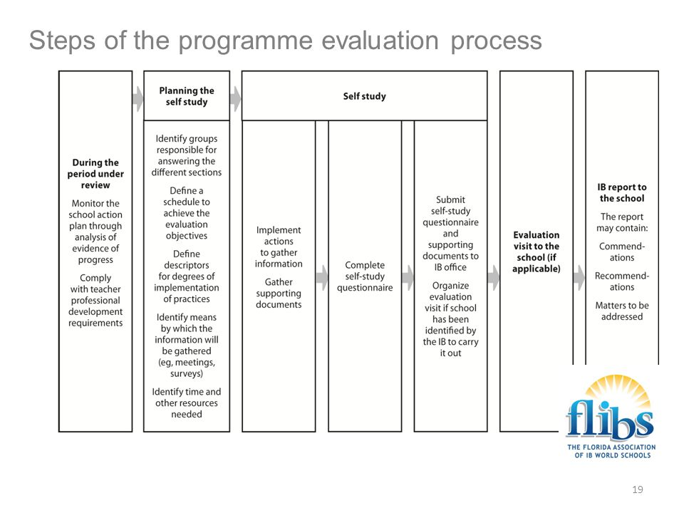 Steps of the programme evaluation process