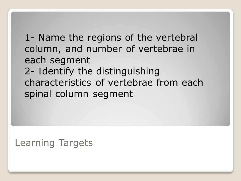 1- Name the regions of the vertebral column, and number of vertebrae in each segment