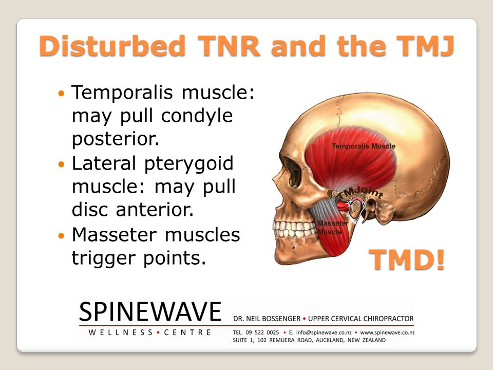 Disturbed TNR and the TMJ