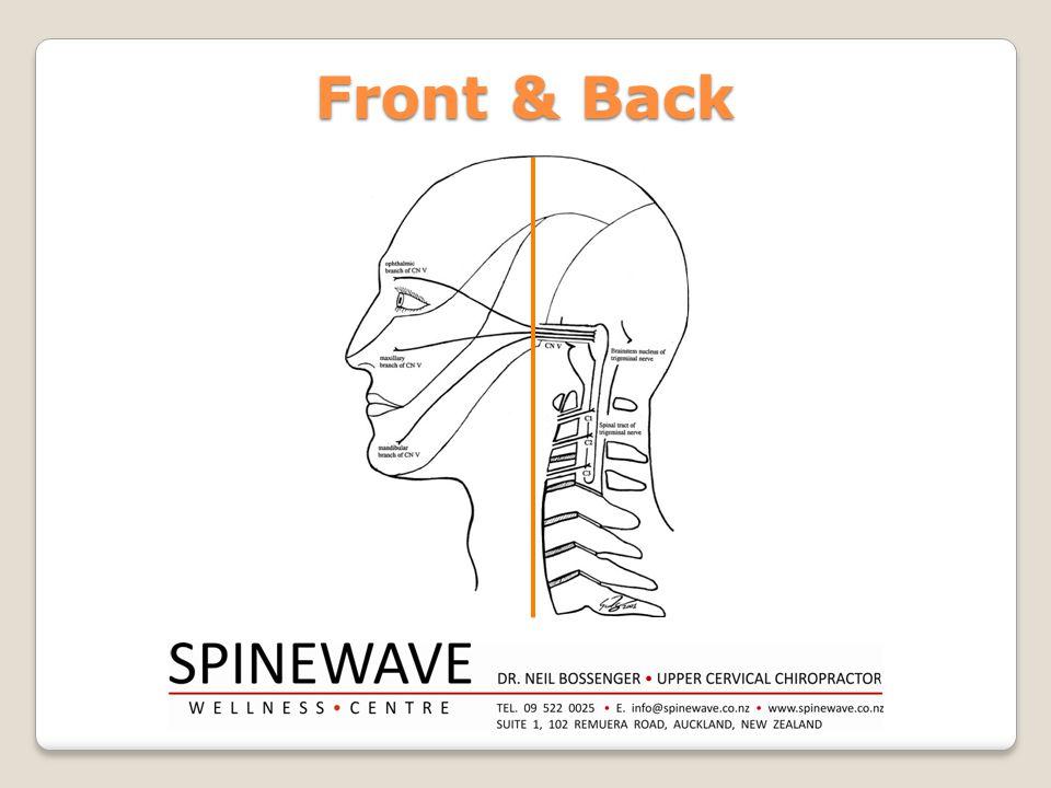 Front & Back