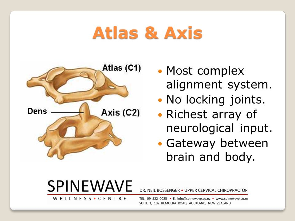 Atlas & Axis Most complex alignment system. No locking joints.