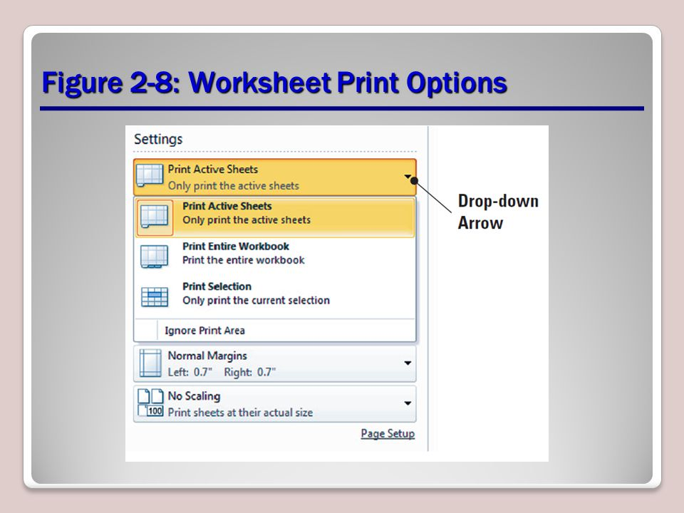 Figure 2-8: Worksheet Print Options