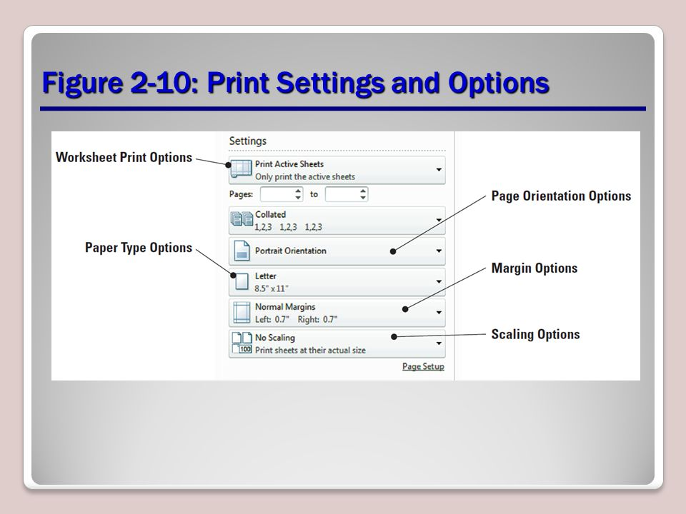 Figure 2-10: Print Settings and Options