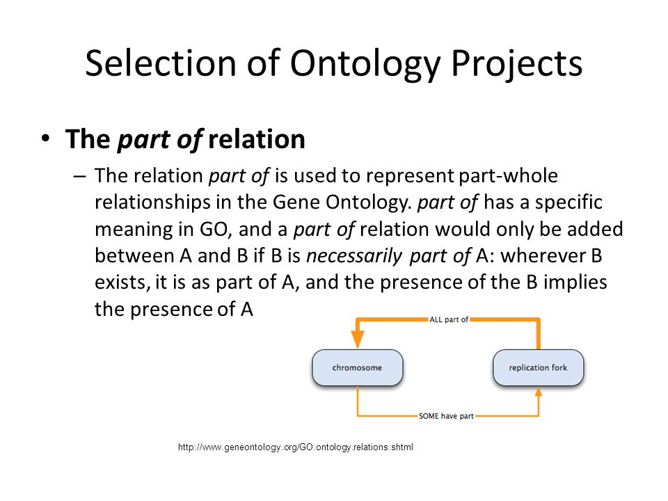 Selection of Ontology Projects
